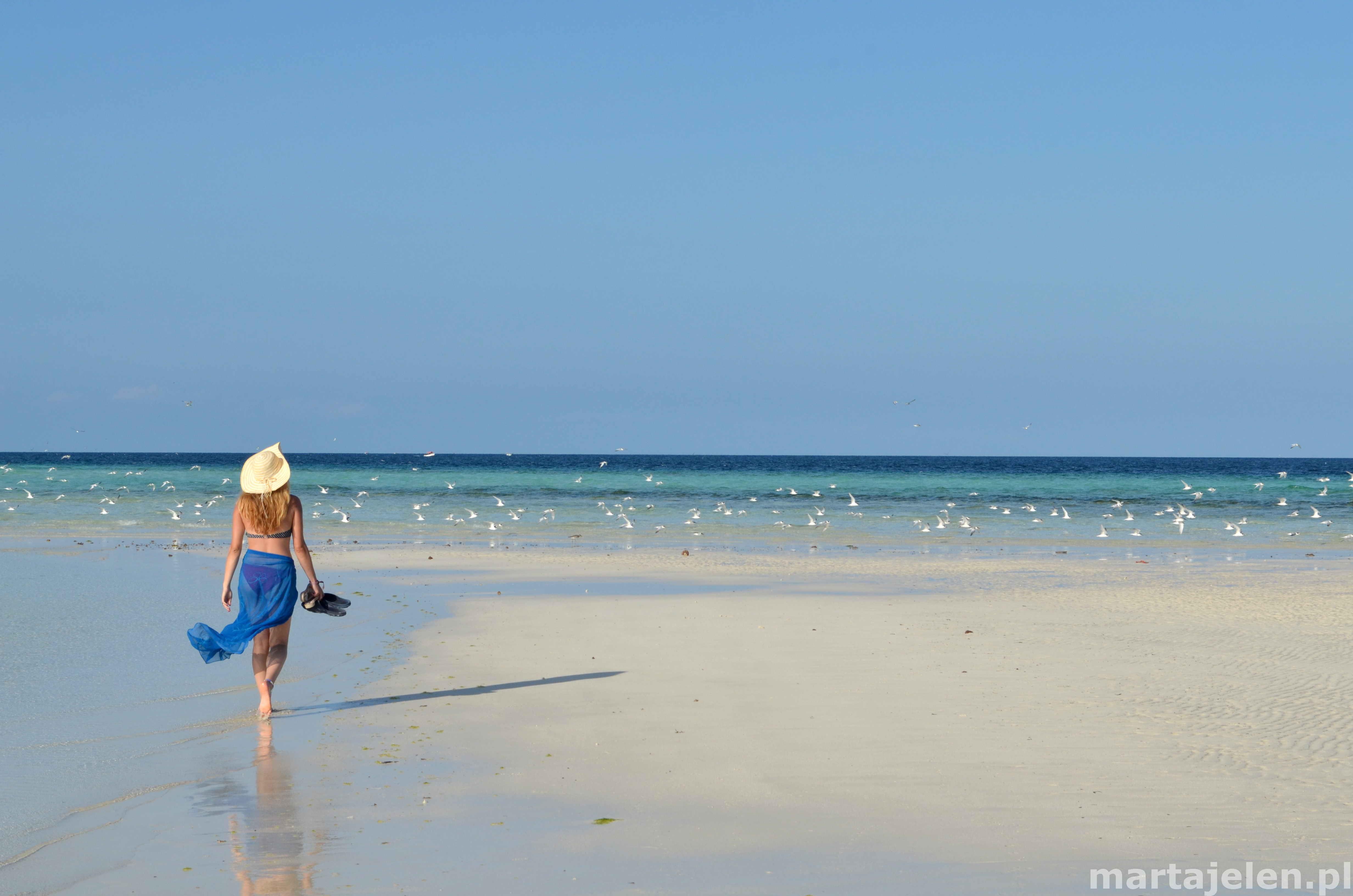 Kobieta idąca plażą nad oceanem w kierunku latających mew