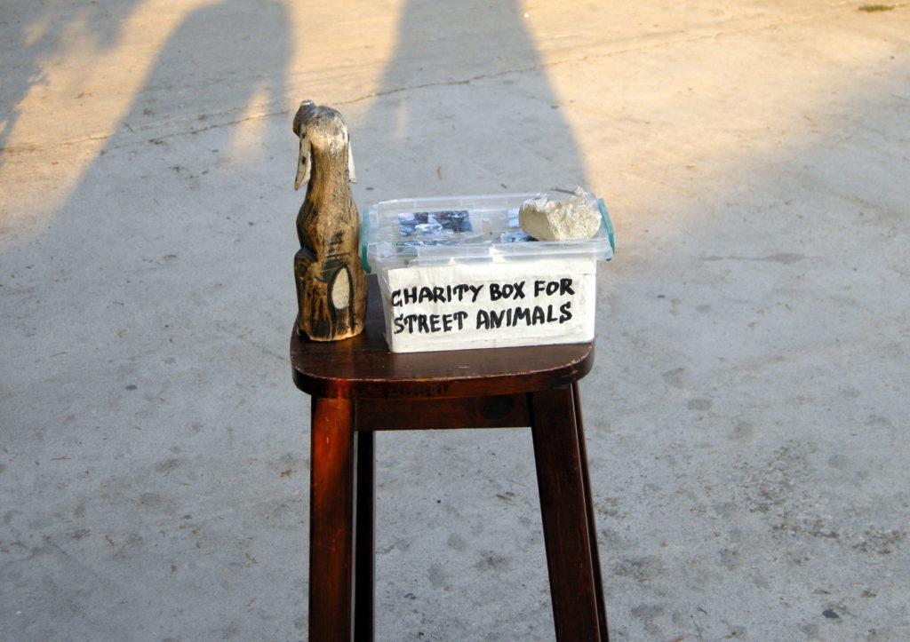 Pudełko na pieniądze dla zwięrząt ulicy