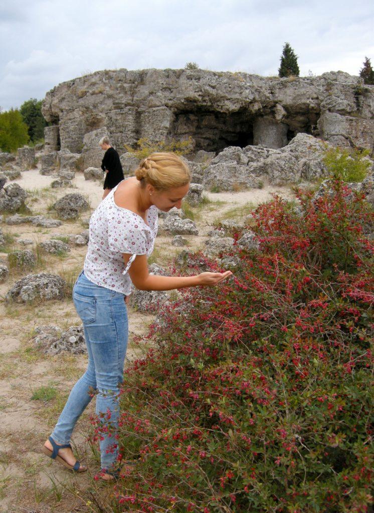 Kamienny Las koło Warny