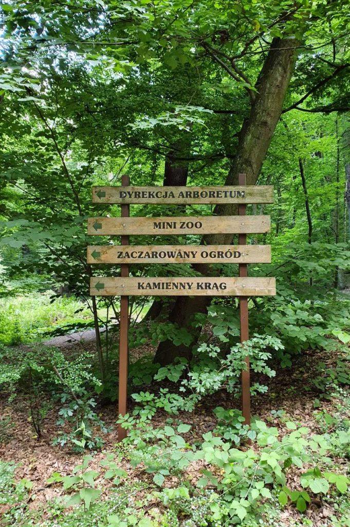 Arboretum Racibórz